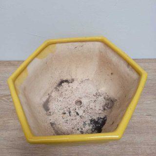 Macetas-decoradas-barro-Amarillo-hexagonal_1